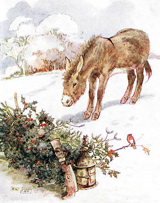 Donkey Drawing - Very Cold And Ground All White by Anne Anderson