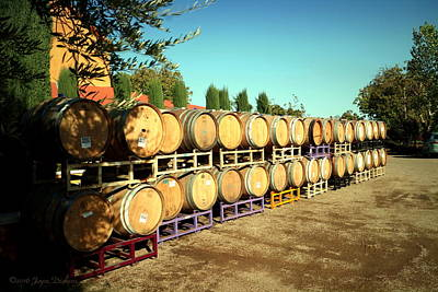 Photograph - Viaggio Winery Wine Barrels by Joyce Dickens