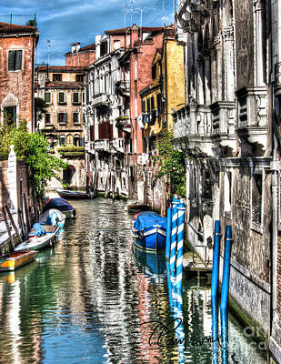 Photograph - Viale Di Venezia by Tom Cameron
