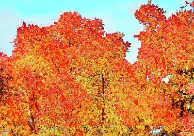 Digital Art - Vibrant Autum Trees by Kae Cheatham