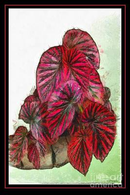 Painting - Vibrant Begonia by Earl Jackson
