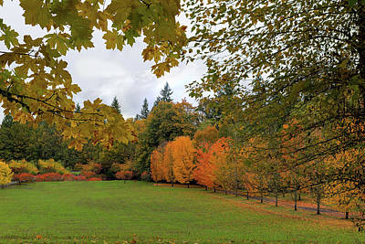 Photograph - Vibrant Fall Colors In Oregon City Park by Jit Lim