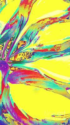 Vibrant Fascination  Art Print