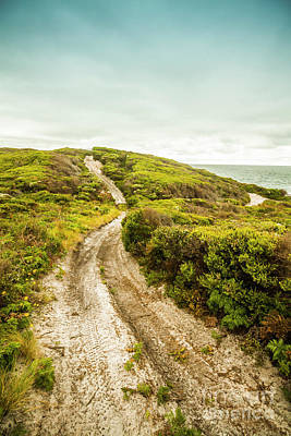 Beach Royalty-Free and Rights-Managed Images - Vibrant green hills and ocean tracks by Jorgo Photography - Wall Art Gallery