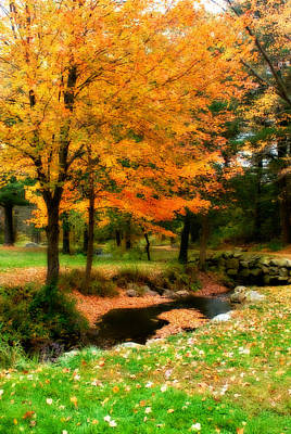 Photograph - Vibrant October by Renee Hong