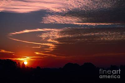 Photograph - Vibrant Sunset by Erica Hanel