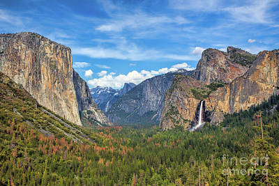 Half Dome Photograph - Vibrant Tunnel View by Mimi Ditchie