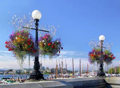 Photograph - Victoria Waterfront View by Carolyn Derstine