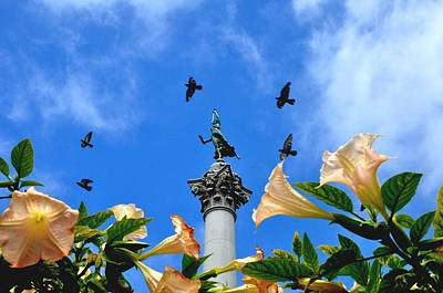 Photograph - Victory Figurine Surrounded By Birds In Union Square San Francisco by Andrew Dinh