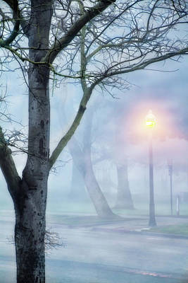 Winter Light Mixed Media - Victory Park In Fog by Terry Davis