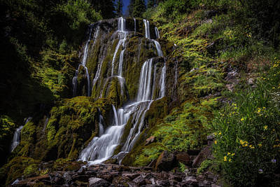 Photograph - Vidae Falls by Cat Connor