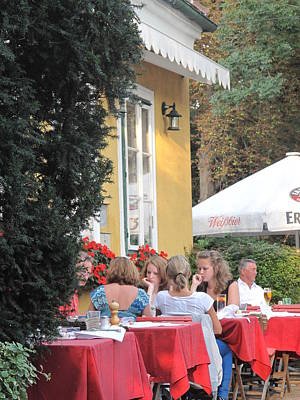 Photograph - Vienna Restaurant In The Park by Ian  MacDonald