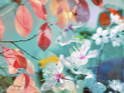 Photograph - Viento De Primavera by Alfonso Garcia