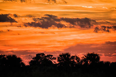 Photograph - Viera Sunset by Fran Gallogly