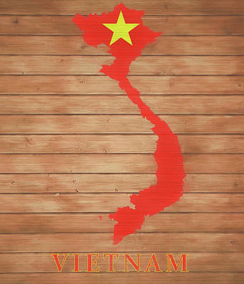 Mixed Media - Vietnam Rustic Map On Wood by Dan Sproul