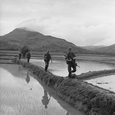 Cold War Era Photograph - Vietnam War. Us Marines Move Along Rice by Everett