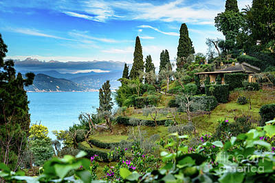 Portofino Photograph - View Above Portofino, Italy by Global Light Photography - Nicole Leffer