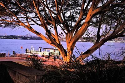 Mannequin Dresses - View Across The Harbor by Giro Tavitian