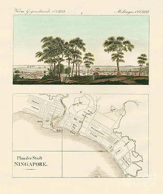 Plan View Drawing - View And Map Of The East Indian Establishment Singapore  by German School