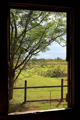 Creole Cottage Wall Art - Photograph - View From A Slave Cabin by Anita Hiltz