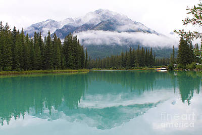 Photograph - View From Bow River by Nina Silver