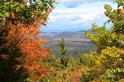 Photograph - View From Douglas Mountain by Michelle Welles