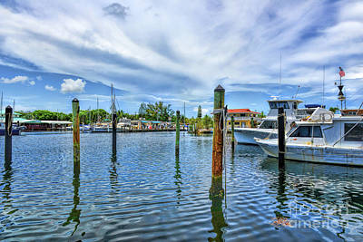 Photograph - View From Key Largo Fisheries by Olga Hamilton