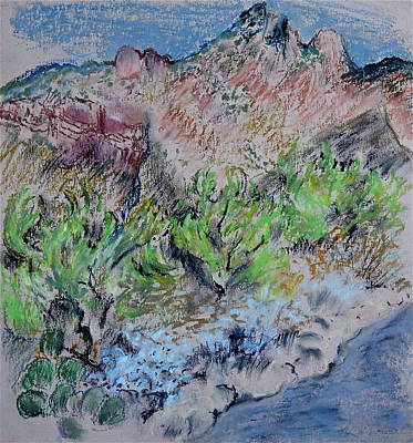 Southwest Landscape Drawing - View From My Studio by Bonnie See