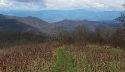 Photograph - View From Silers Bald 2015a by Cathy Lindsey