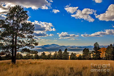 Photograph - View From Snowbowl by Robert Bales