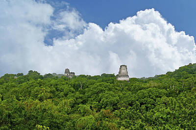 Photograph - View From Temple Tikal by Marius Sipa