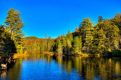 Photograph - View From The Bridge At Nicks Lake by David Patterson