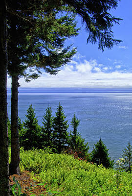 Photograph - View From The Fundy Trail by Carolyn Derstine