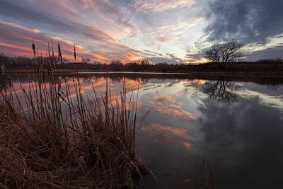 Photograph - View From The Pond by Scott Bean