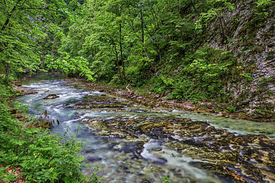 Photograph - View In Vintgar Gorge - Slovenia by Stuart Litoff