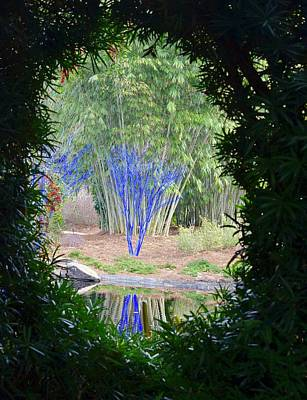 Photograph - View Into An Enchanted Garden by Richard Bryce and Family