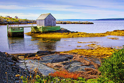 Photograph - View Of Blue Rocks Harbour by Carolyn Derstine