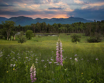 Photograph - View Of Cannon Mountain by Darylann Leonard Photography