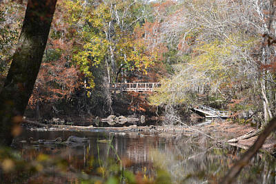 Photograph - View Of Foot Bridge Of Santa Fe River In Florida by rd Erickson
