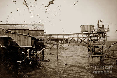 Photograph - View Of Hovden Fish Tower And Old Bucket Hoist From The East Cannery Row 1927 by California Views Mr Pat Hathaway Archives