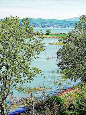 Photograph - View Of Lago Trasimeno From Braccio by Dorothy Berry-Lound