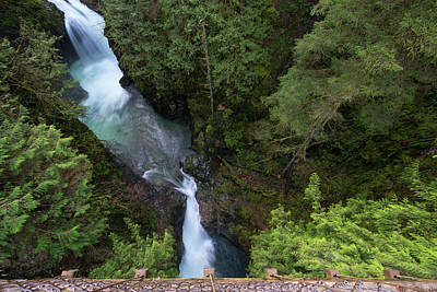 Photograph - View Of Lynn Canyon by Jaden Nyberg