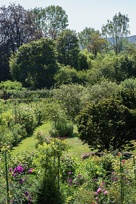 Lovely Lavender - View of Monets Garden in Giverny France from the House by Carol Ailles