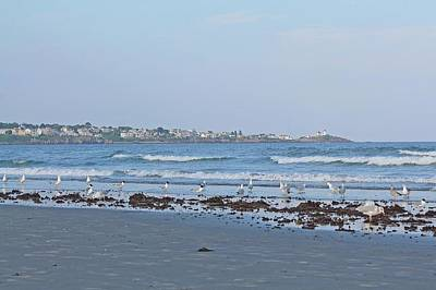 Photograph - View Of Nubble Lighthouse From Long Sands Beach York Maine 2 by Michael Saunders