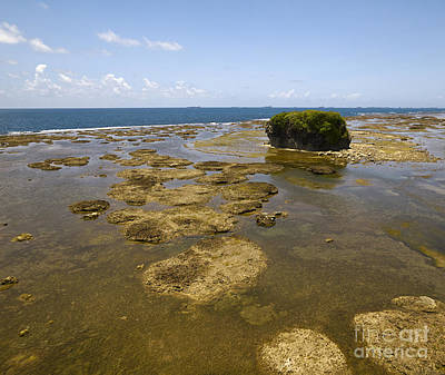 City Photograph - View Of Panama Coastline On The Pacific Side by Dani Prints and Images