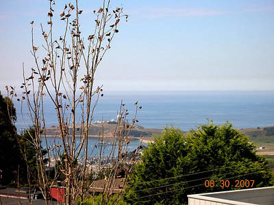 Photograph - View Of Pillar Point by Carolyn Donnell