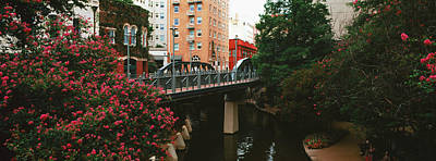 View Of San Antonio River Walk, San Antonio, Texas, Usa Art Print