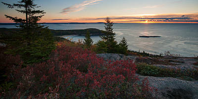Photograph - View Of Sand Beach From Top Of Gorham Mountain by Darylann Leonard Photography