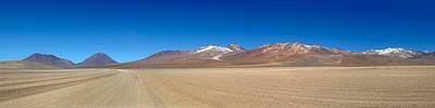View Of The Eduardo Avaroa Andean Fauna Print by Panoramic Images