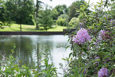 Photograph - View Of The Lake At Marks Hall by Dawn Cavalieri